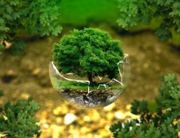 Moda ecosostenibile: le novità del 2021